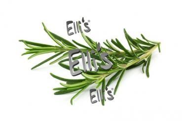 Rosmarin - Ellis Lebensmittelaroma