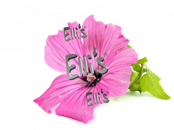 Hibiskusblüten Aroma