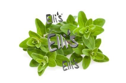 Majoran - Ellis Lebensmittelaroma