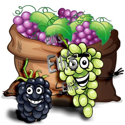 Grape Dream - Ellis Lebensmittel Aroma