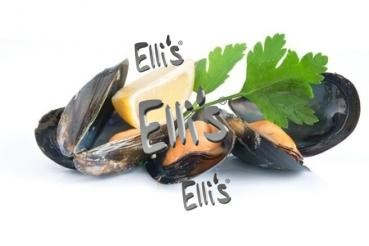 Muschel - Ellis Lebensmittelaroma