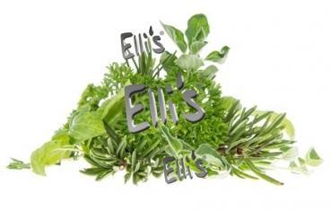 Kräuter - Ellis Lebensmittelaroma