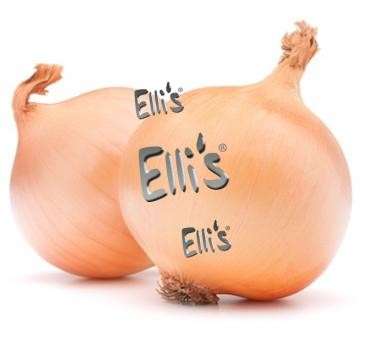 Zwiebel - Ellis Lebensmittelaroma