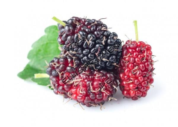 Leckeres Maulbeer Lebensmittel Aroma, welches sich hervorragend zum Kochen und Backen eignet