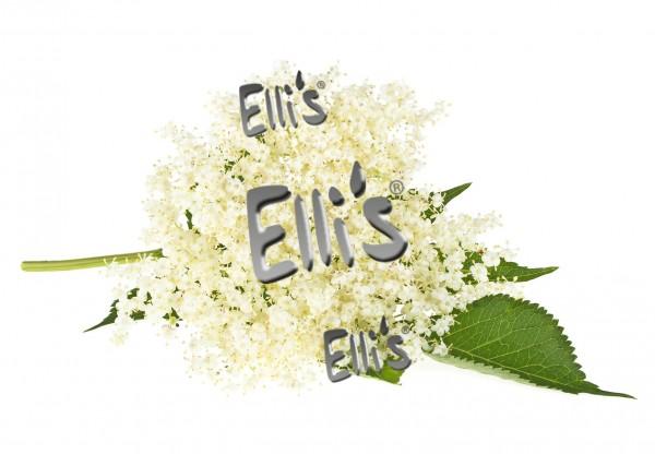 Holunder Blüten Aroma