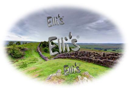 Atem Albions - Ellis Lebensmittel Aroma