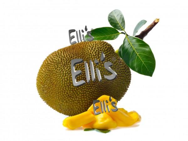 Jackfruit Aroma Ellis