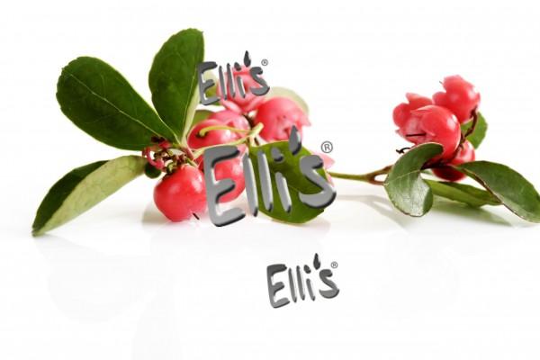 Wintergreen Lebensmittelaroma Ellis