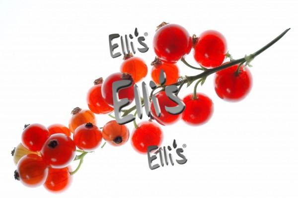 Johannisbeere Rot Aroma Ellis