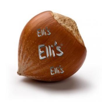 Haselnuss - Ellis Lebensmittelaroma